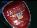 Jaguar XK 1956 года
