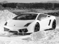 Lamborghini Gallardo 2008 года